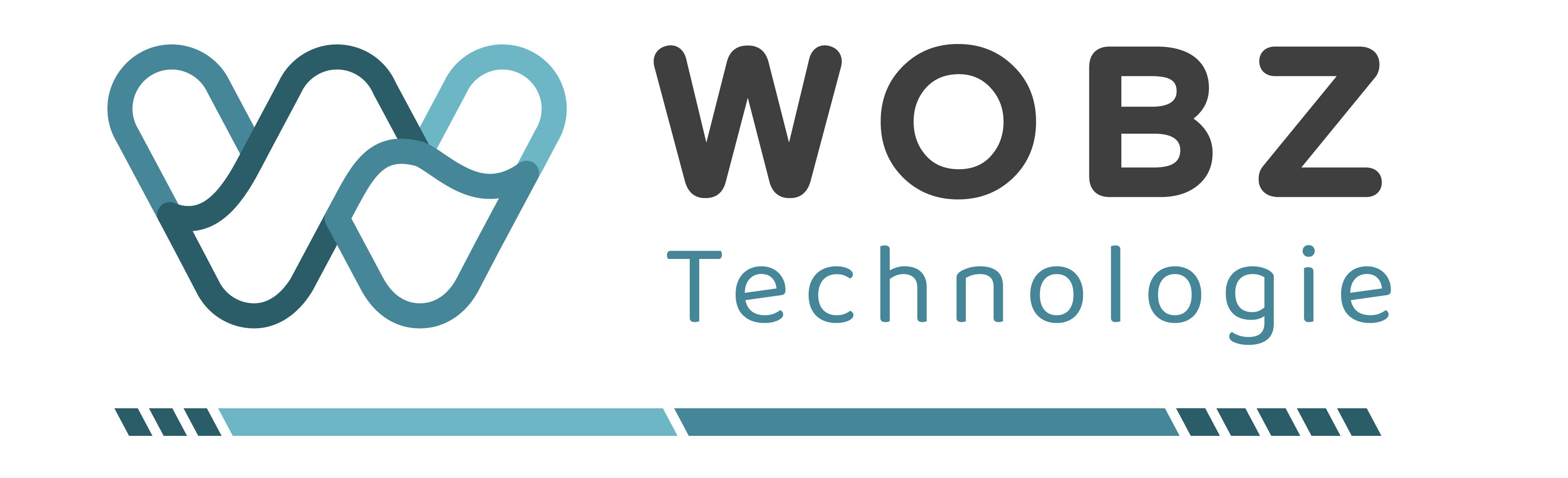 logo wobz categories_Wobz Techno Couleur Horiz
